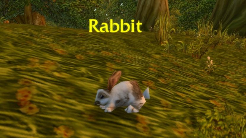 Warum unsichtbare Bunnies World of Warcraft kontrollieren